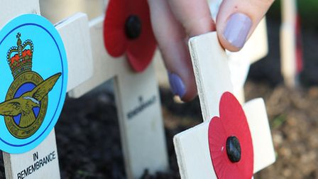 Remembrance Sunday services are taking place across the area today.