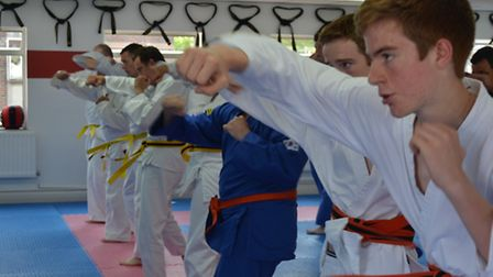 The Chells Choi Kwang Do School is hosting the workshops in Stevenage.