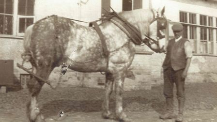Georgie the horse with Bert Miles outside Redcoats Farmhouse in the 1930s.