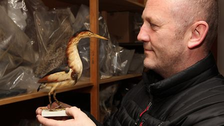 Mike Ilett from the Herts bird club with the north Herts museum service specimen he identified as a