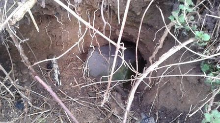 Vandals pushed breeze blocks and rubble into badger setts near Wychdell in Stevenage.
