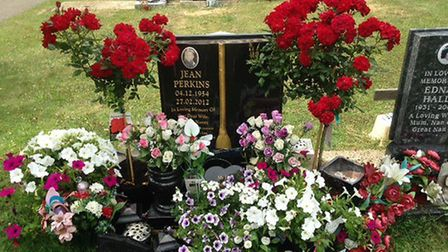 A mystery good Samaritan left the two rose bushes at the grave.