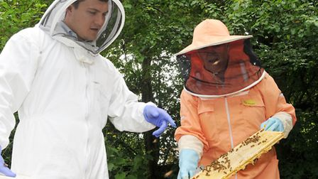 Oliver Pritchard is shown inside a hive by Lieva Nation
