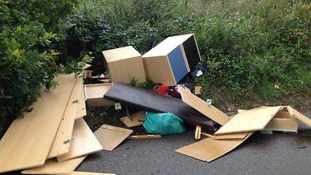 Rubbish illegally dumped in Chadwell Road, Stevenage.