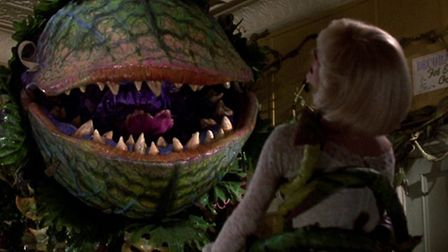 A scene from the 1986 Frank Oz movie version of hit musical Little Shop Of Horrors