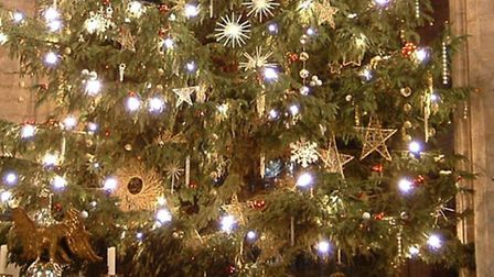The Christmas tree inside Ely Cathedral last year.