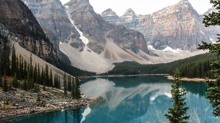 The wildlife of the Canadian Rocky Mountains will be explored in Letchworth