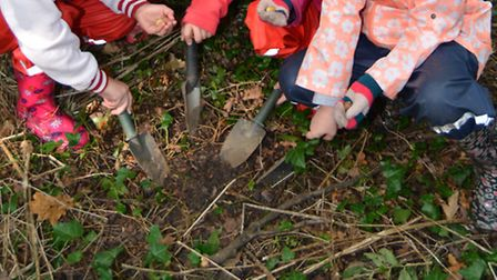 Youngsters are being urged to get involved in the free trees offer