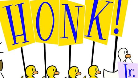 Honk Jr is the lastest production for Hitchin's Young Thespians