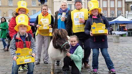 Fairy the Shetland pony joins Marie Curie Cancer fundraisers in Hitchin