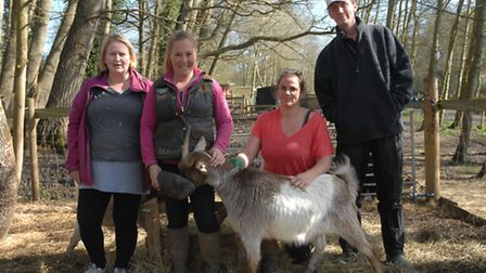 Alison Thomson, Rachel Berry, Kylie Hudspeth and Michael Romanis-Geer of Daisy May's Farm with one o