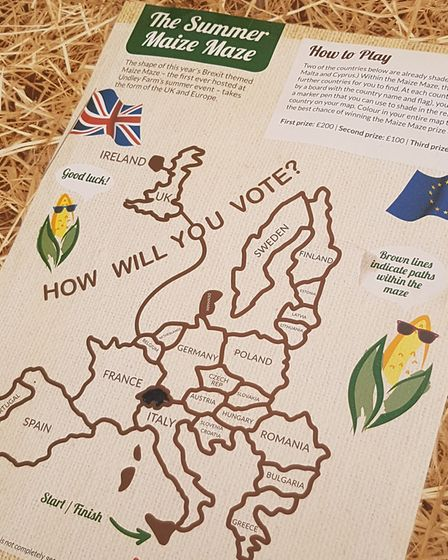 The new Brexit themed maize maze has opened for the summer at Undley Farm. PICTURE: RACHEL EDGE