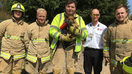 Firefighter rescue dog from pipe. Pictuyre: Stansted Fire