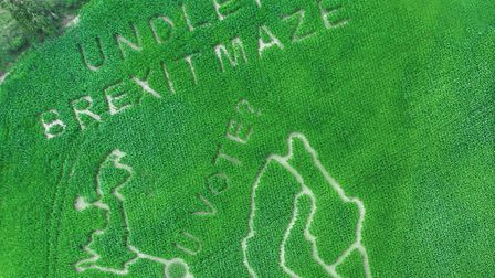 Undley Farm's Brexit maze, as seen from the sky. Picture: UNDLEY FARM