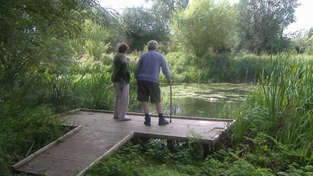A viewing platform at Stotfold Watermill and Nature Reserve.