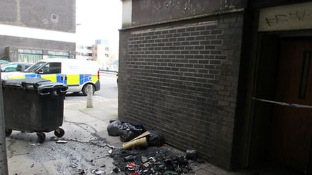 A woman was arrested this morning after industrial bins were set on fire in a Stevenage alleway