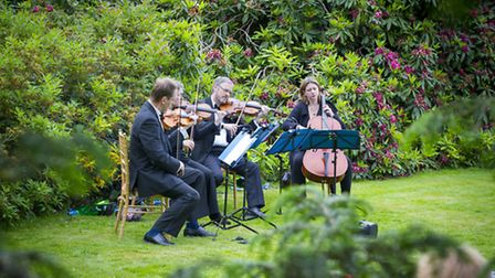 The Manor House String Quartet will be playing in the Swiss Garden at Shuttleworth. Credit: Darren H