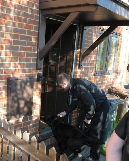 A police drugs dog in action