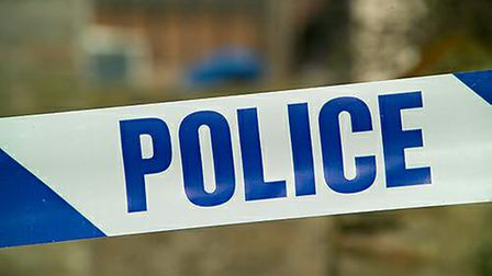 Police are appealing for witnesses after a woman was sexually assaulted in a Sandy alleyway.