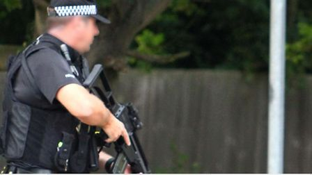 Armed police were called to Woolners Way in Stevenage after reports of a man being seen with a gun.