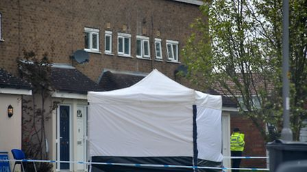 A police forensics tent at the murder scene in Long Leaves, Stevenage.
