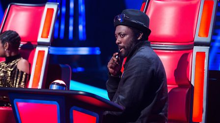 Will.i.am on The Voice. Picture credit: Rachel Joseph.