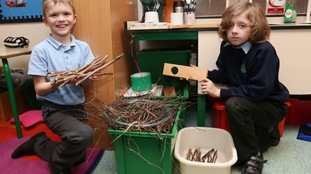 Mitchell and Leland, Peartree Spring School Year 4 Eco team members building a shelter for a frog.