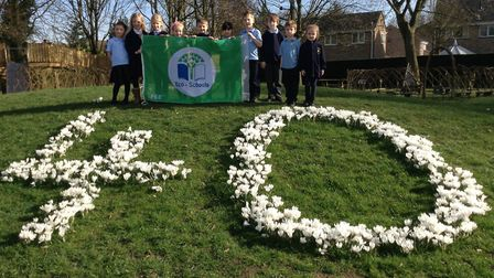 Pupils from the school's eco council with the new Green Flag in front of 40 display of crocuses plan