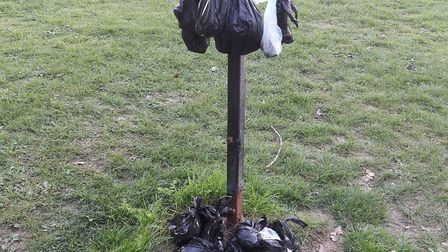 Poo hung in bags on one of the vacant bin posts on Letchworth's Lordship Estate. Photo: Kevin Ferry