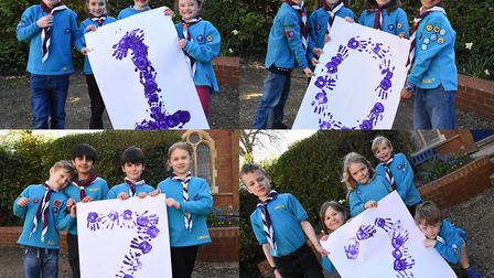Hitchin scouts are growing