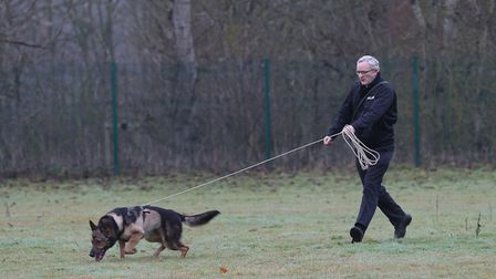 PD Finn and his handler PC Dave Wardell perform a practice search pattern.
