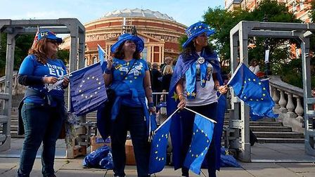 Pro-EU campaigners will hand out 50,000 EU flags at this year's Last Night of The Proms. Picture: Ni