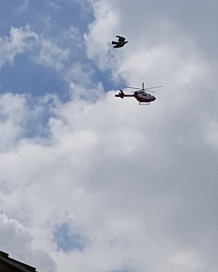 The air ambulance over Stevenage's Silam Road. Picture: Andy Owen
