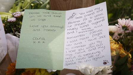 The card and floral tributes left to Wayne by Carla by the side of Baden Powell Way in Biggleswade a