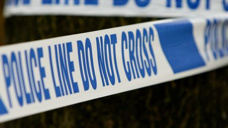 A dead body was discovered in a Biggleswade field on Saturday, police have confirmed this morning.