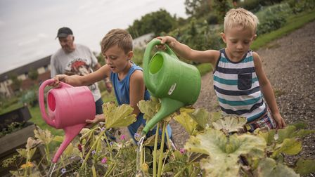 Ronnie and Tommy King, aged nine and six, get the watering cans out. Picture: Aragon