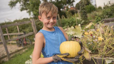 Ronnie King, nine, with his pumpkin. Picture: Aragon
