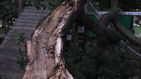 The oak tree branch after it fell across the slide in Letchworth's Howard Park. Picture: North Herts