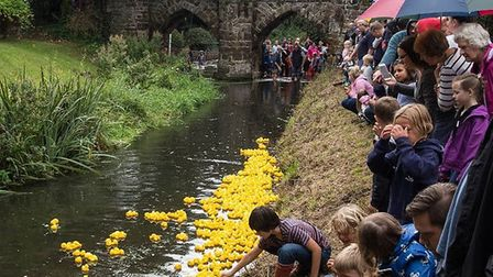 Onlookers cheering on their plastic ducks at the annual Sutton duck race. Picture: Gabi Senger