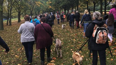 More than 100 dogs took part in the Helihounds event in Stevenage on Sunday. Picture: EHAAT.