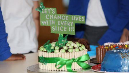 Some of the cakes at Roebuck Academy baked for the Macmillan Coffee Morning bake off. Picture: Danny