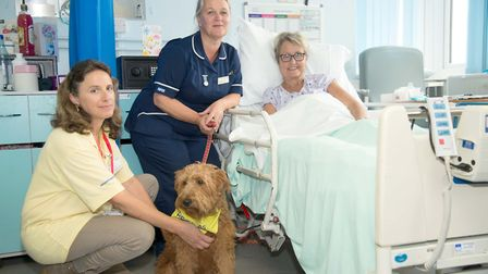 Left to right: Owner Clare Boscawen with Mabel, Sister Angela Bernard and Jayne Abrahams. Picture: E