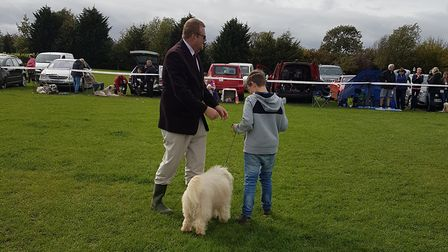 Rory and Rolo getting ready to compete in the SCAMPS junior handler competition. Picture: Jenny Henn