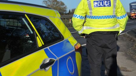 A dog died after being hit on the A1(M) near Stevenage yesterday.