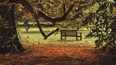 Audley End gardens in the autumn. Picture: AUDLEY END HOUSE