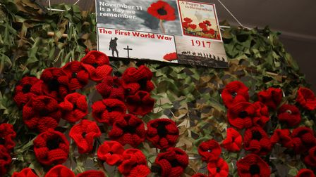 The Hitchin Stitchin' Remembrance Sunday display of 99 red poppies at Festiwool. Picture: Mia Beskee