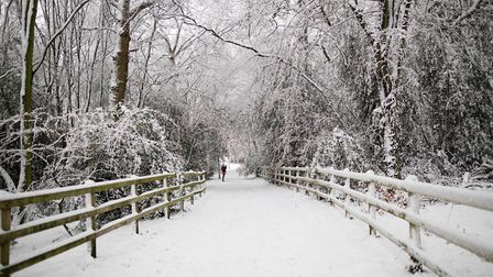 Snowfall in Stevenage. Picture: Margesson Photography
