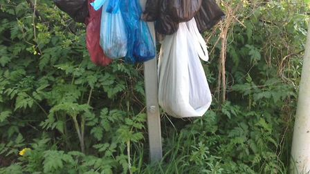 Dog walkers protested by hanging bags of dog poo on vacant posts, including this one in Hitchin.