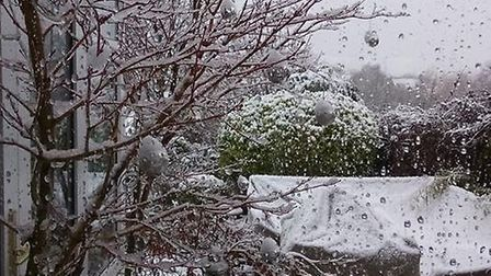 Snow picture taken from a window in Penfold Close in Baldock. Picture: Neil Cherry