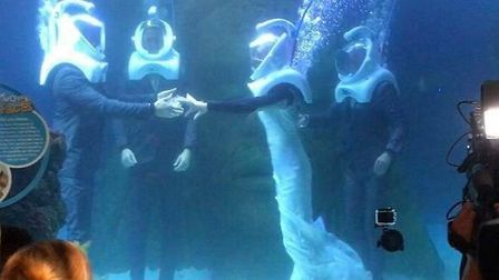 Lauren and Gary Dongray tied the knot underwater at Sea Life Manchester. Picture: Lauren Dongray.